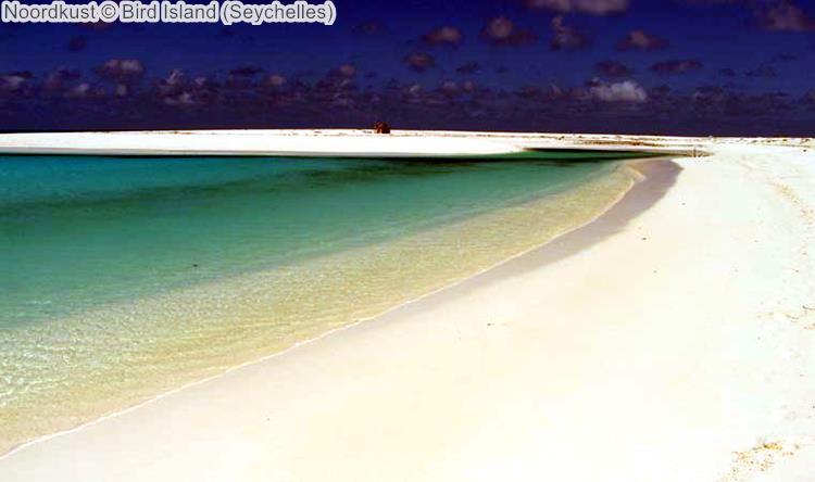 Noordkust Bird Island Seychelles