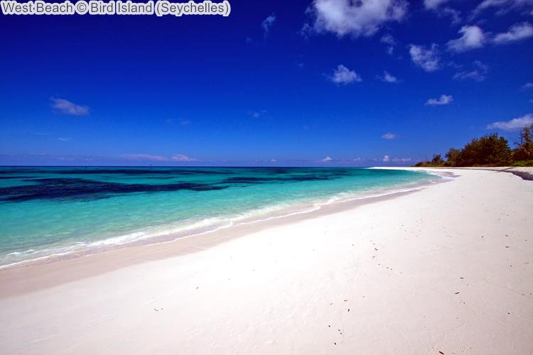 West Beach Bird Island Seychelles