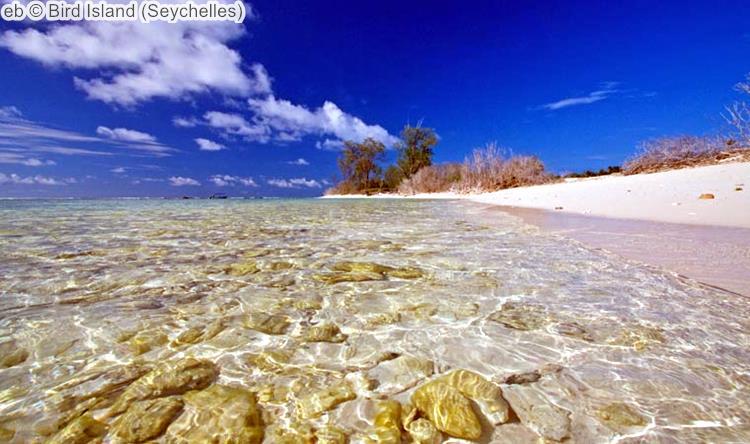 eb Bird Island Seychelles