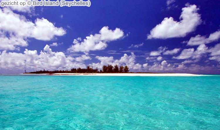 gezicht op Bird Island Seychelles