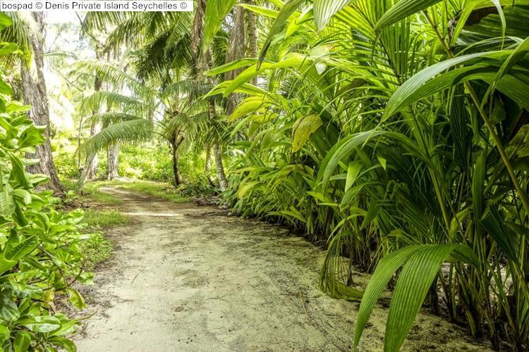 bospad Denis Private Island Seychelles